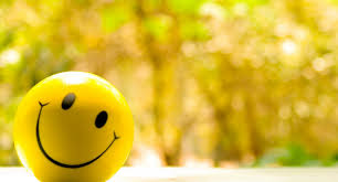 Mutluluk Denen Sır,