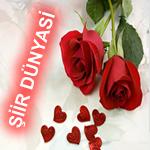Gunay Ahmedova Şiirleri 1